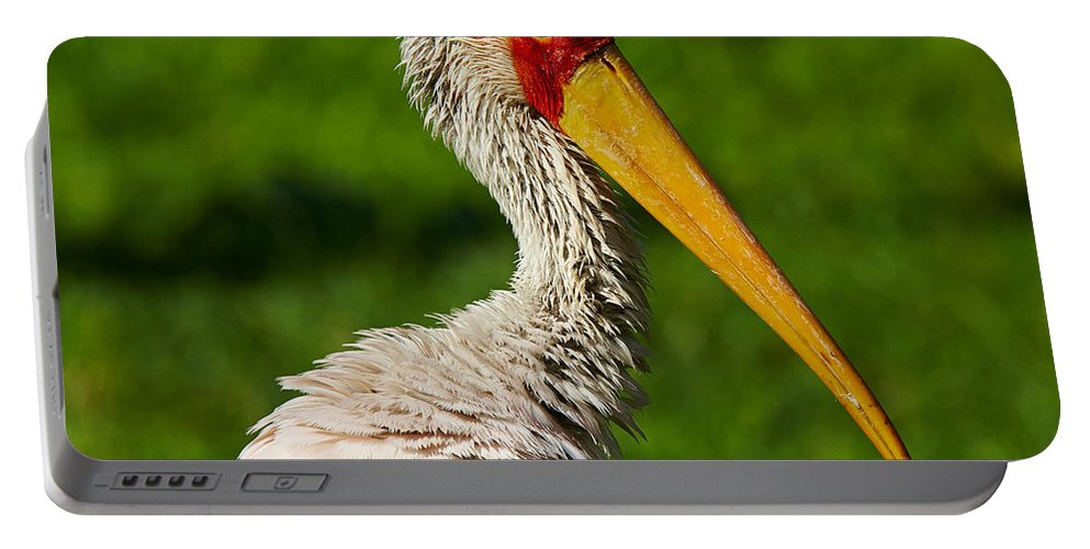 One Portable Battery Charger featuring the photograph Painted Stork by Nick Biemans