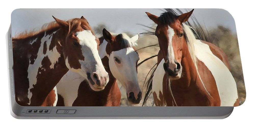 Horses Portable Battery Charger featuring the photograph Painted Wild Horses by Athena Mckinzie