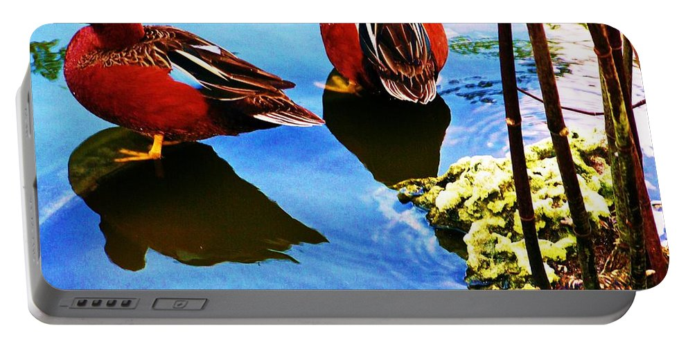 Ducks Portable Battery Charger featuring the photograph Pair by Chuck Hicks