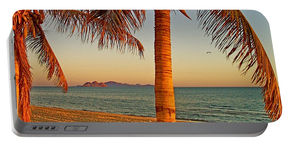 Palm Trees By A Restaurant On The Beach In Bahia Kino Portable Battery Charger featuring the photograph Palm Trees By A Restaurant On The Beach In Bahia Kino-sonora-mexico by Ruth Hager