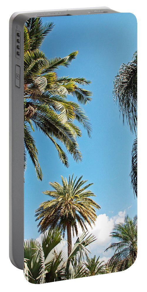 Palm Portable Battery Charger featuring the photograph Palms In The Sky by Aimee L Maher ALM GALLERY