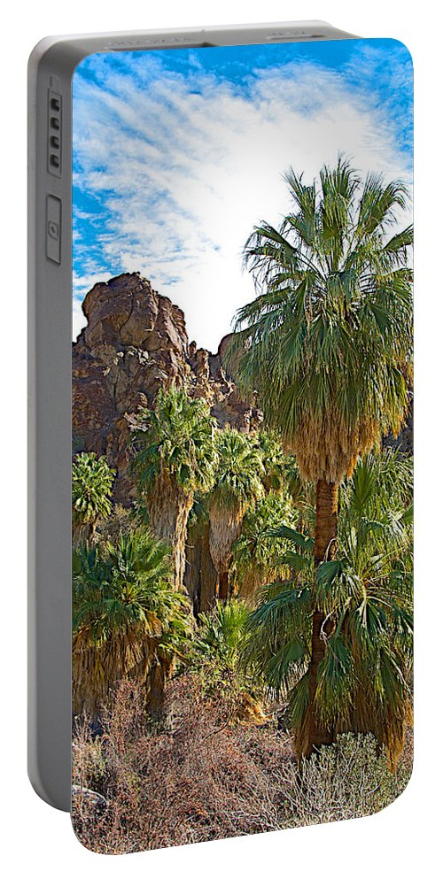 Palms Stand Tall In Andreas Canyon In Indian Canyons Portable Battery Charger featuring the photograph Palms Stand Tall In Andreas Canyon In Indian Canyons-ca by Ruth Hager