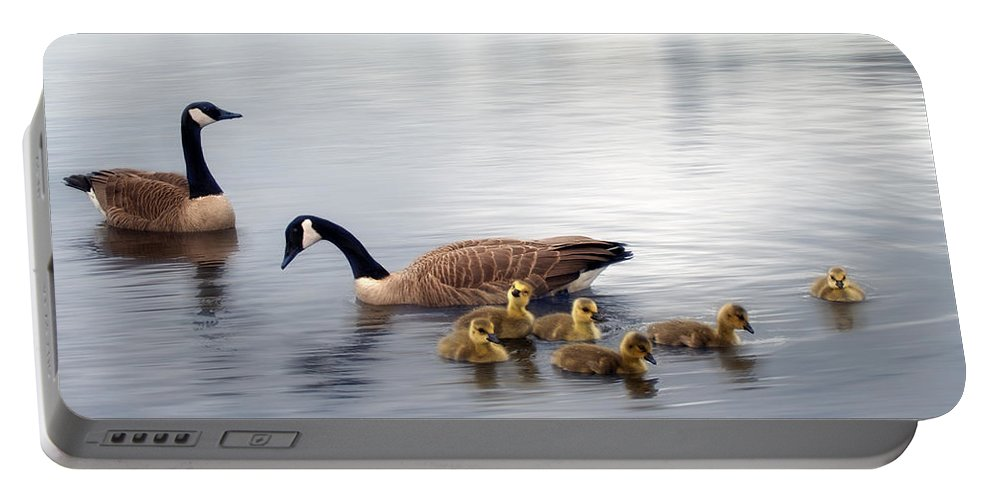 Water Portable Battery Charger featuring the photograph Panoramic Goose Family Outing by Lisa Knechtel