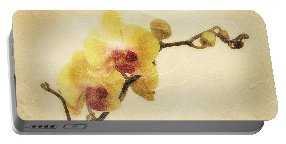 Orchid Portable Battery Charger featuring the photograph Paper Flowers by Donna Blackhall
