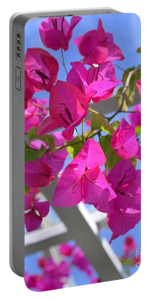 Paper Portable Battery Charger featuring the photograph Paper Flowers by Kathleen Struckle