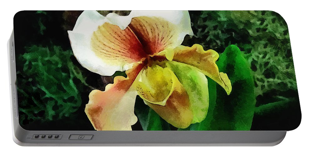 Paphiopedilum Portable Battery Charger featuring the photograph Paph Hellas Westonbirt Orchid by Susan Savad