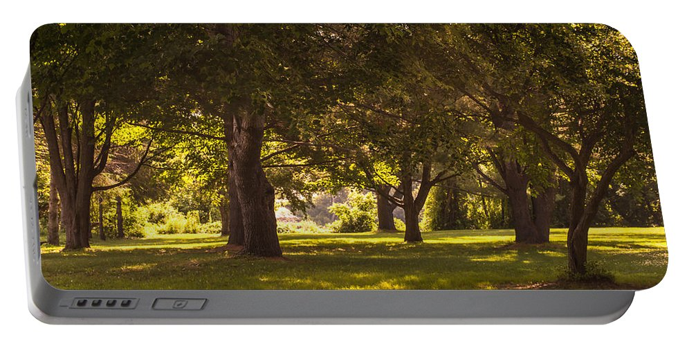 Park Portable Battery Charger featuring the photograph Park By The Rivers by Sherman Perry