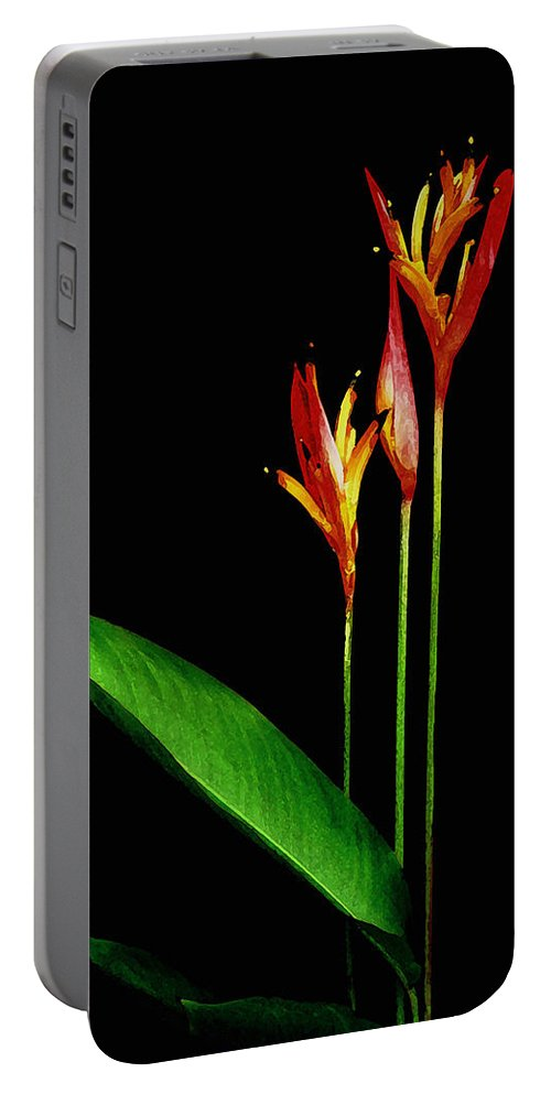 Hawaii Iphone Cases Portable Battery Charger featuring the photograph Parrots Beak Heliconia by James Temple