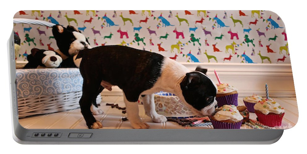 Animal Portable Battery Charger featuring the photograph Party On Puppy by Susan Herber