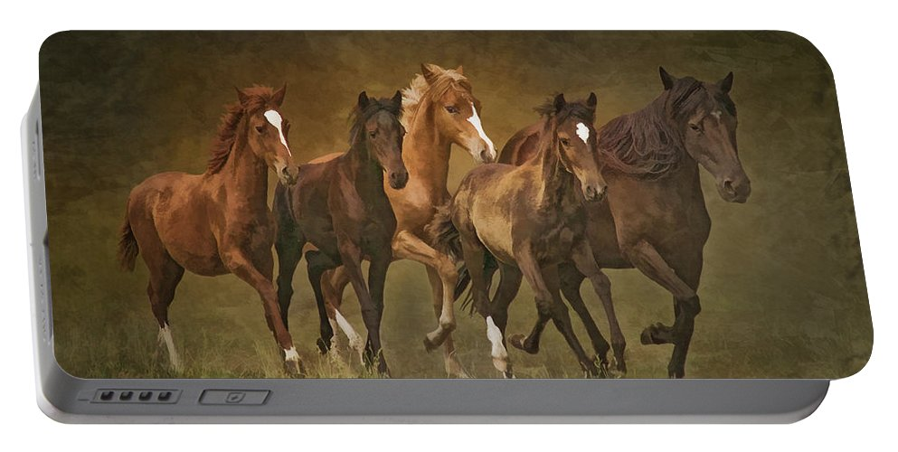 Horses Portable Battery Charger featuring the photograph Paso Peruvians by Priscilla Burgers