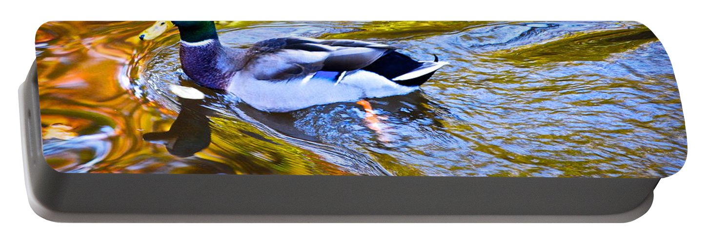 Mallard Portable Battery Charger featuring the photograph Passing Through by Frozen in Time Fine Art Photography