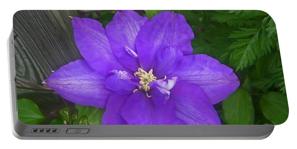 Flower Portable Battery Charger featuring the photograph Passion Vine by Aimee L Maher ALM GALLERY