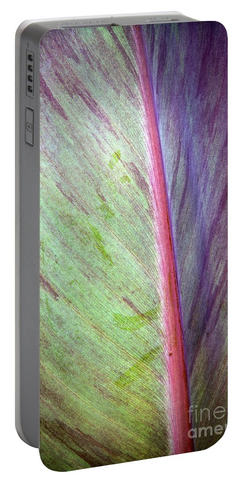 Background Portable Battery Charger featuring the photograph Pastel Leaf Detail by Tim Hester