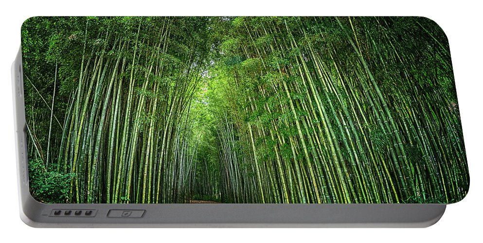 Bamboo Portable Battery Charger featuring the photograph Path Through Bamboo Forest E139 by Wendell Franks