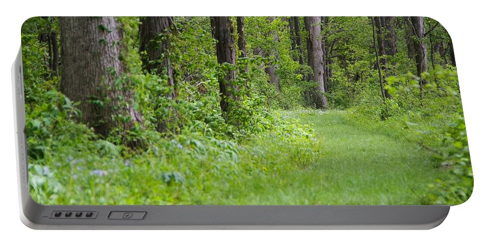 Path To The Green Forest Portable Battery Charger featuring the photograph Path To The Green Forest by Dan Sproul