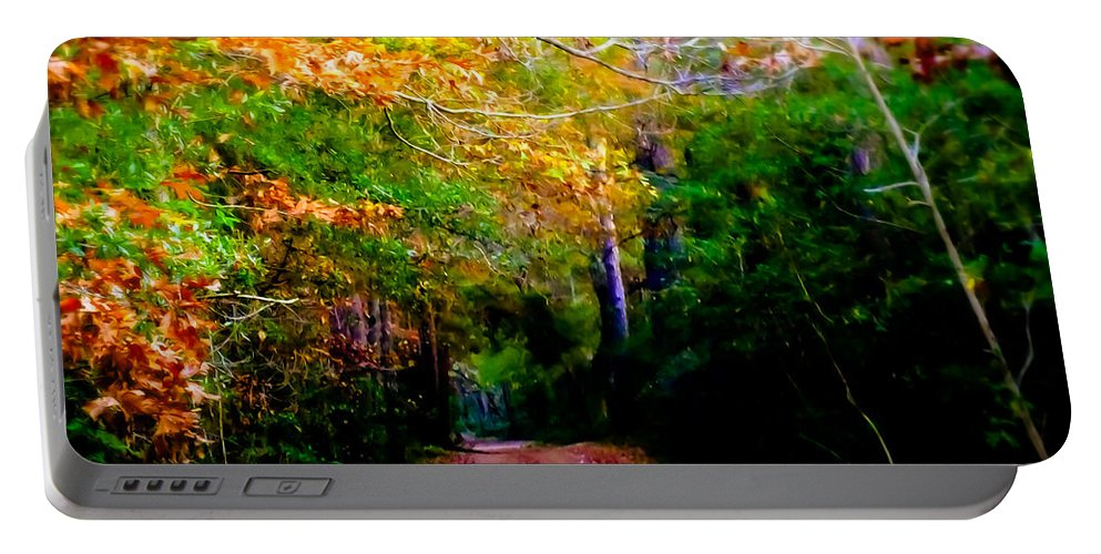 Paths Portable Battery Charger featuring the photograph Paths We Choose by Karen Wiles