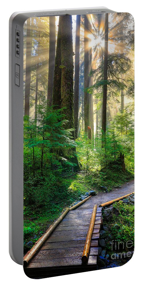 America Portable Battery Charger featuring the photograph Pathway Into The Light by Inge Johnsson