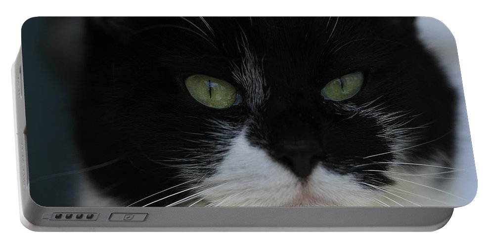 Tuxedo Portable Battery Charger featuring the photograph Green Eyes Of A Tuxedo Cat by Valerie Collins