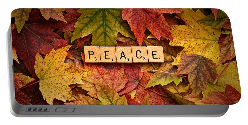 Autumn Portable Battery Charger featuring the photograph Peace-autumn by Onyonet Photo Studios