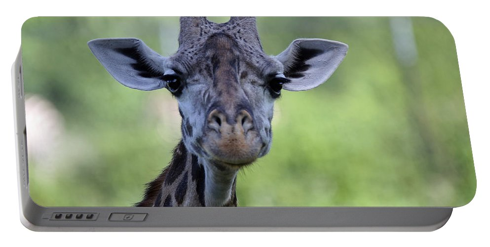Giraffe Portable Battery Charger featuring the photograph Peaceful Eyes by Lynn Sprowl