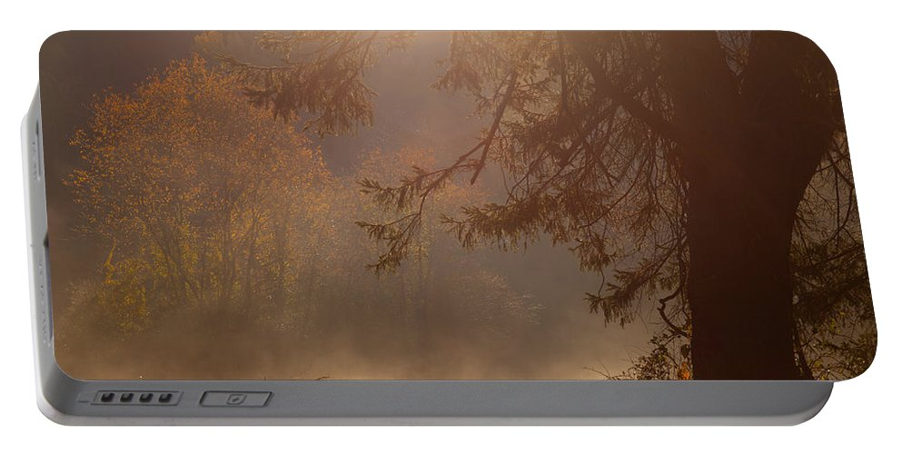 Tree Portable Battery Charger featuring the photograph Peaceful Moments by Karol Livote