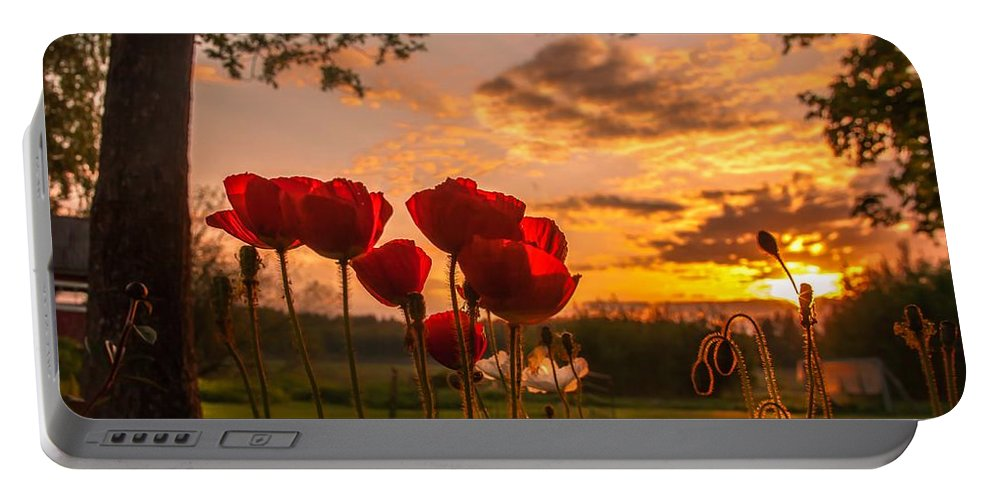 Poppy Portable Battery Charger featuring the photograph Peaceful Poppy by Rose-Maries Pictures