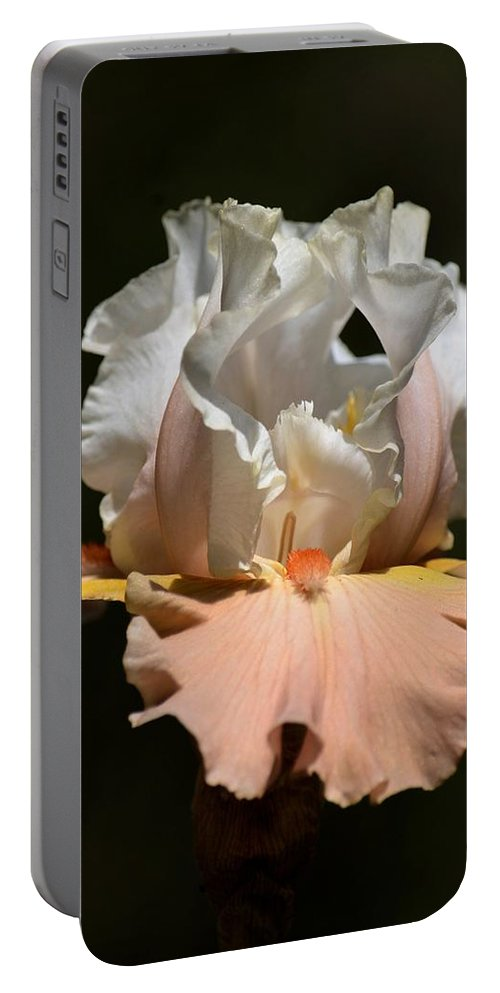 Peach Elegance Portable Battery Charger featuring the photograph Peach Elegance by Maria Urso