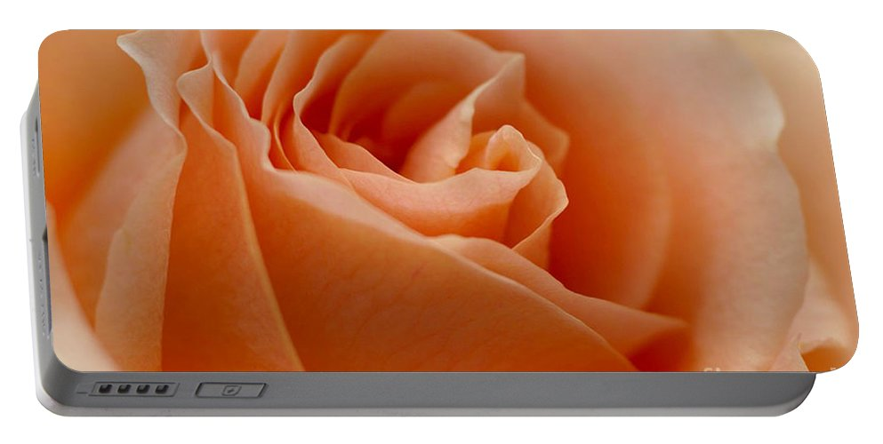 Peach Portable Battery Charger featuring the photograph Peach Rose by Carol Lynch