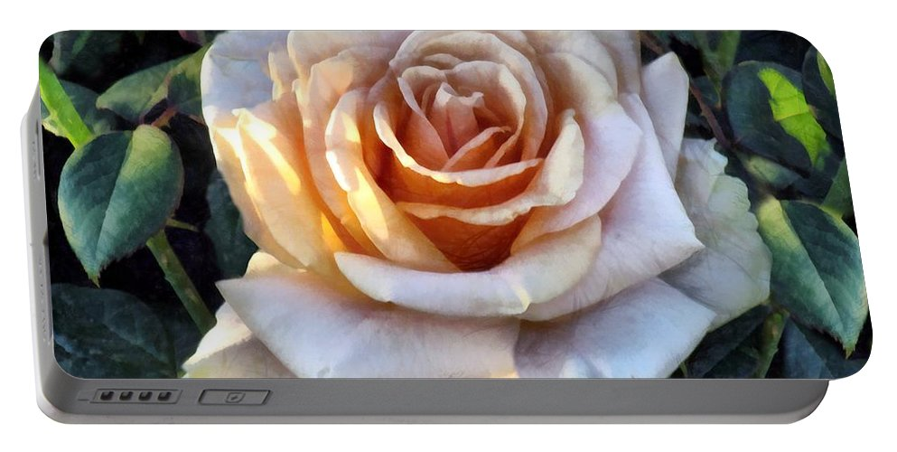 Rose Portable Battery Charger featuring the painting Peachpink Pout by RC DeWinter