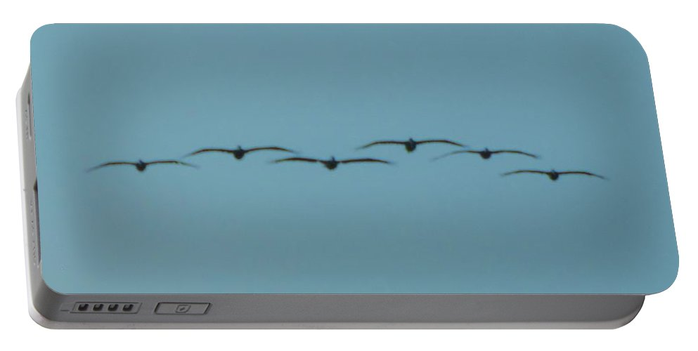 Kerisart Portable Battery Charger featuring the photograph Pelican Air Force by Keri West