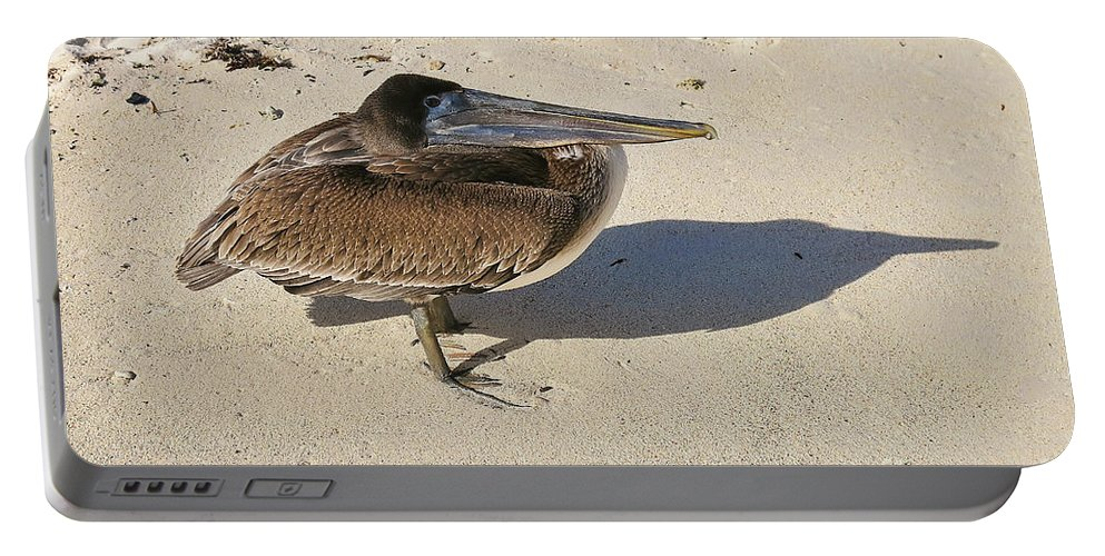Bird Portable Battery Charger featuring the photograph Pelican And His Shadow by Teresa Zieba