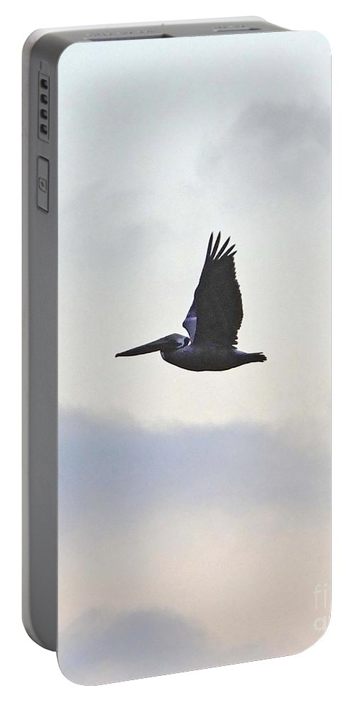 Pelican Portable Battery Charger featuring the photograph Pelican Fly By by Lizi Beard-Ward