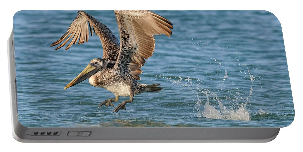 Pelican Portable Battery Charger featuring the photograph Pelican Taking Off by Dave Mills