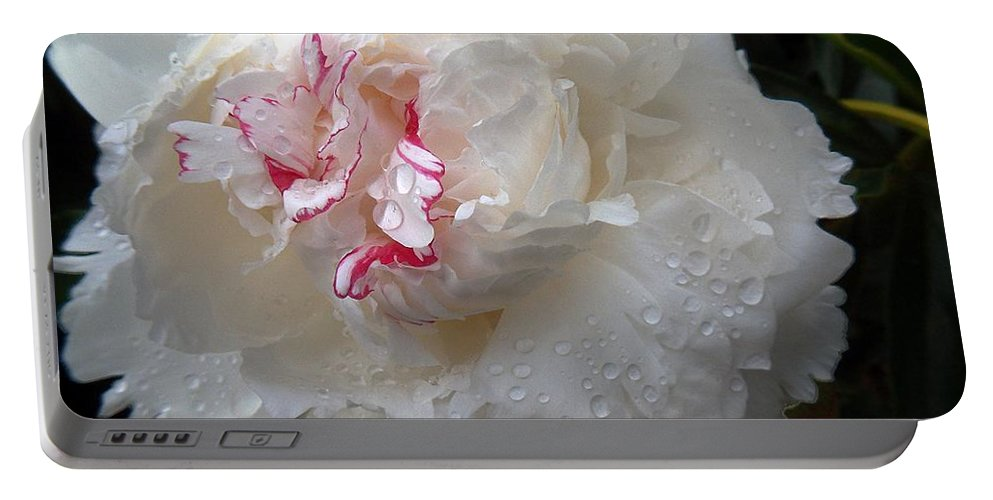 Peony Portable Battery Charger featuring the photograph Peony Tears by RC DeWinter