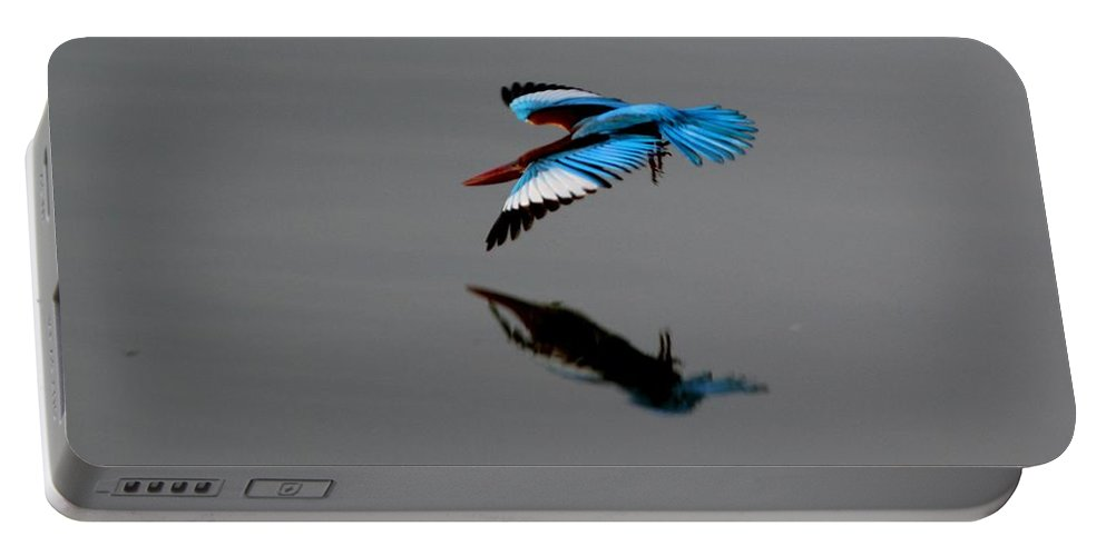 Dive Portable Battery Charger featuring the photograph Perfect Dive by Ramabhadran Thirupattur