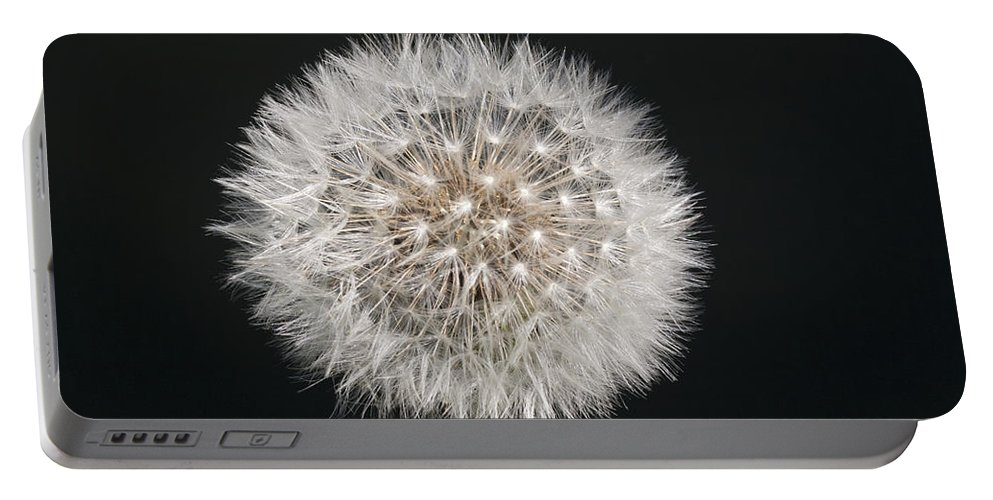 Dandelion Portable Battery Charger featuring the photograph Perfect Puffball by Richard Thomas