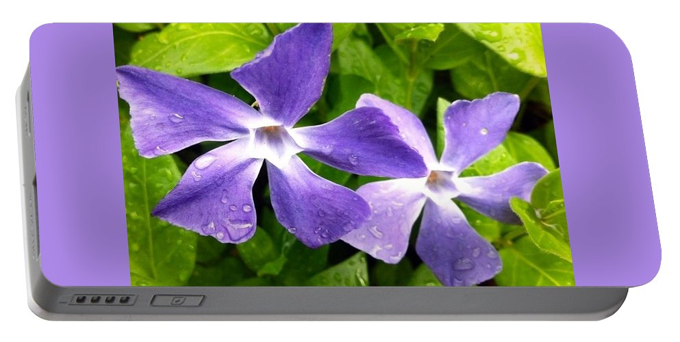 Periwinkle Blue Dew Flower Portable Battery Charger featuring the photograph Periwinkle Blue Dew by Susan Garren