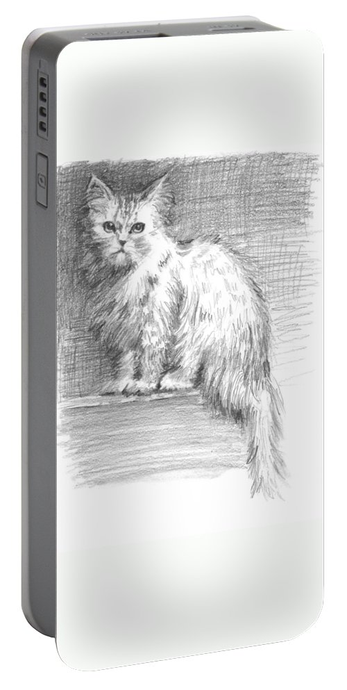 Persian Cat Portable Battery Charger featuring the drawing Persian Cat by Sarah Parks