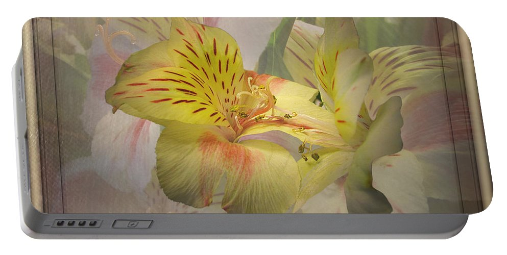 Lily Portable Battery Charger featuring the photograph Peruvian Lily Framed by Susan McMenamin