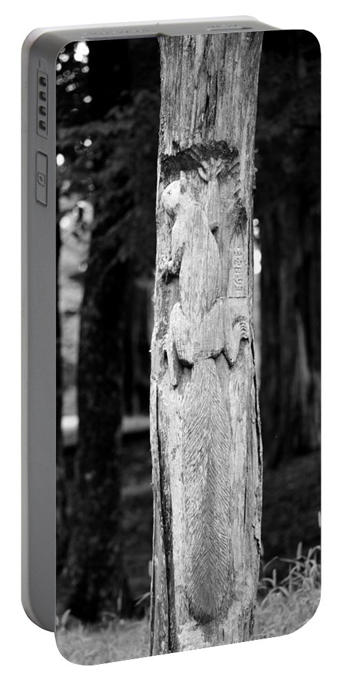 Petrified In Time Portable Battery Charger featuring the photograph Petrified In Time by Maria Urso
