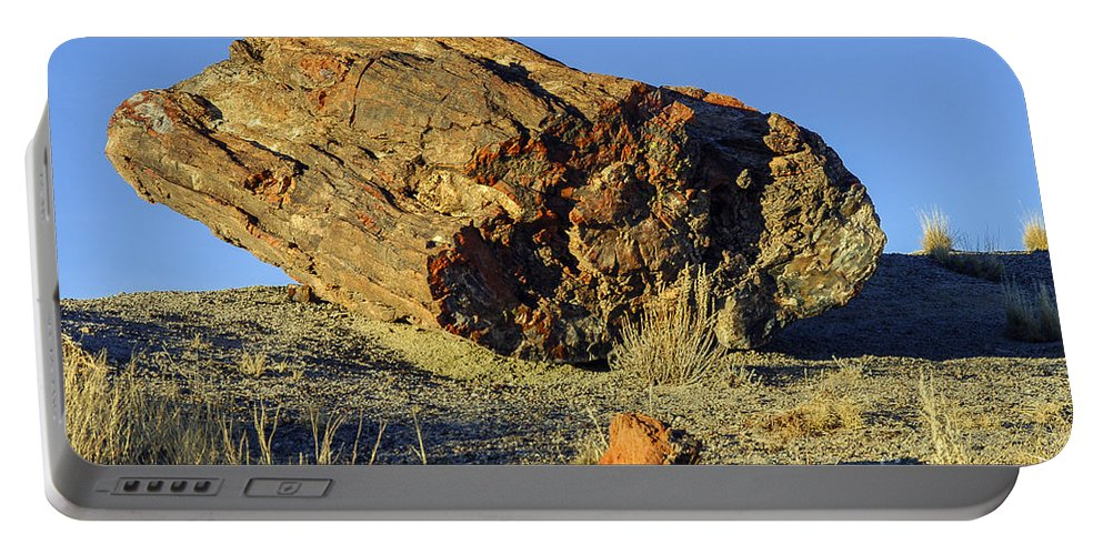 Petrified Forrest National Park Arizona Parks Log Logs Tree Trees Desert Deserts Desertscape Desertscapes Landscape Landscapes Landmarks Landmark Portable Battery Charger featuring the photograph Petrified Log by Bob Phillips