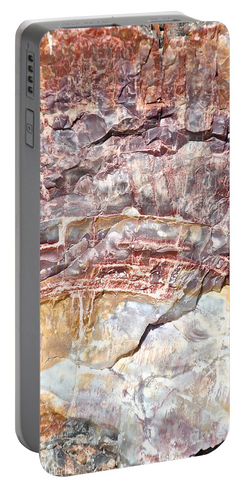 Outdoors Portable Battery Charger featuring the photograph Petrified Rings by Susan Herber