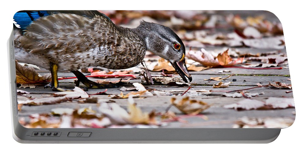 Portable Battery Charger featuring the photograph Picking And Choosing by Cheryl Baxter