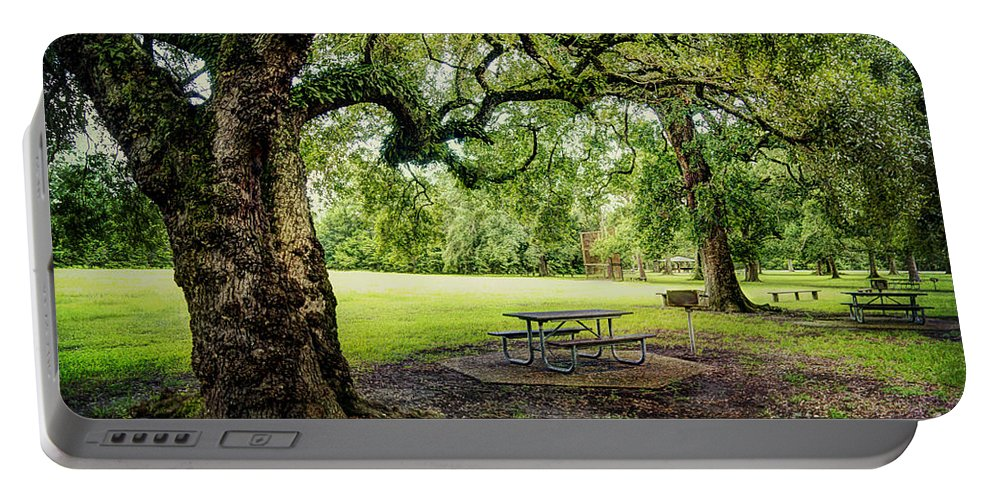 Park Portable Battery Charger featuring the photograph Picnic At The Park by Joan McCool