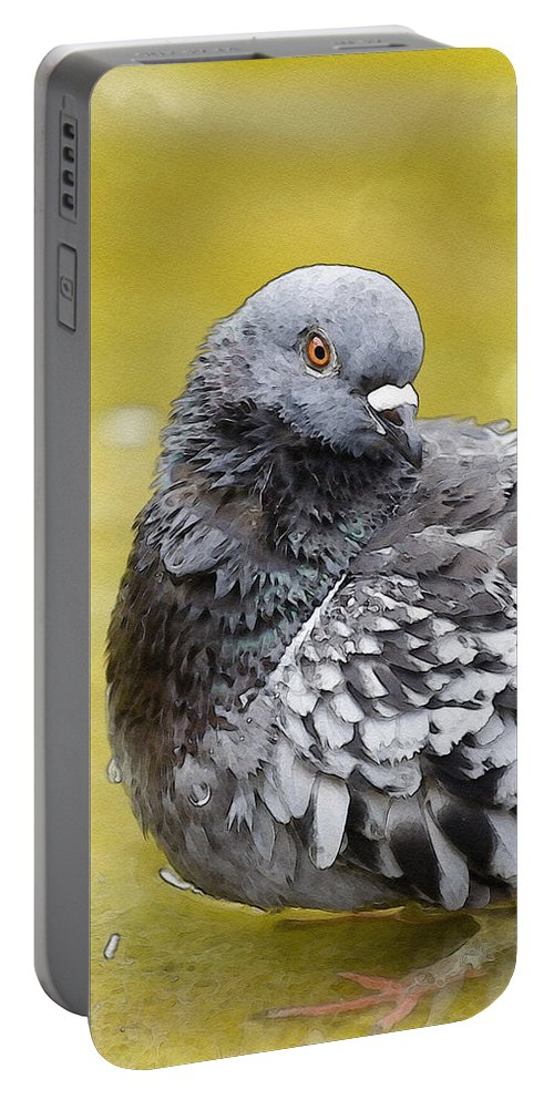 Watercolor Portable Battery Charger featuring the photograph Pigeon Bath by Pati Photography