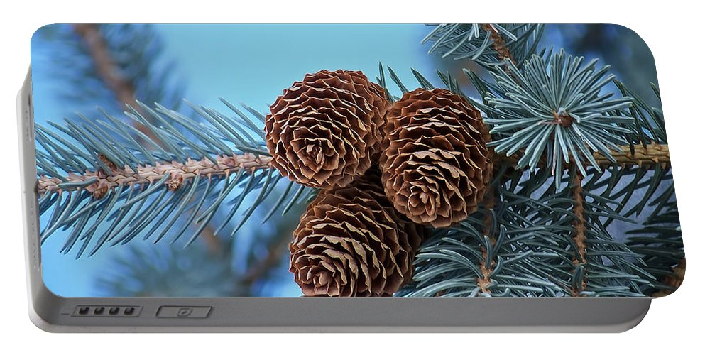 Christmas Portable Battery Charger featuring the photograph Pine Cones by Ernie Echols