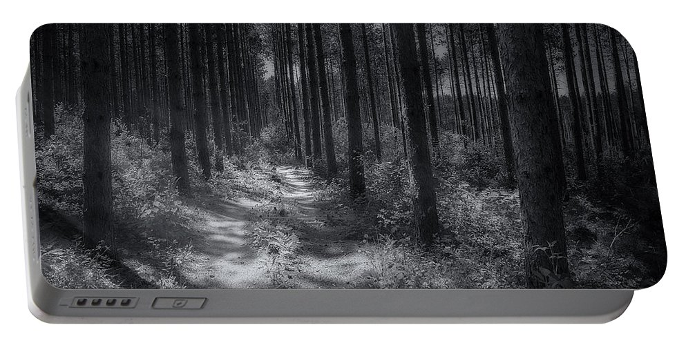 Trees Portable Battery Charger featuring the photograph Pine Grove by Scott Norris