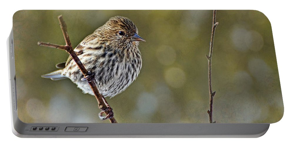 Bird Portable Battery Charger featuring the photograph Pine Siskin by Debbie Portwood