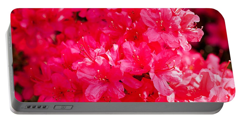 Nature Portable Battery Charger featuring the photograph Pink Azalea's by Michael Porchik