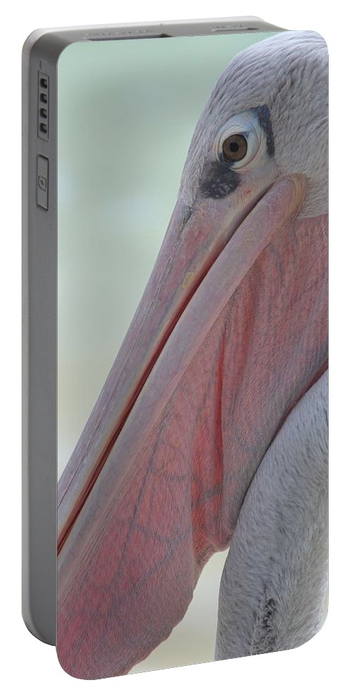 Animal Portable Battery Charger featuring the photograph Pink Backed Pelican by Davandra Cribbie